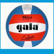 ballons mini-volley