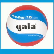 GALA volleybal Color I FIVB